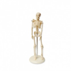 Mechero de laboratorio MicroBunsen. gas natural