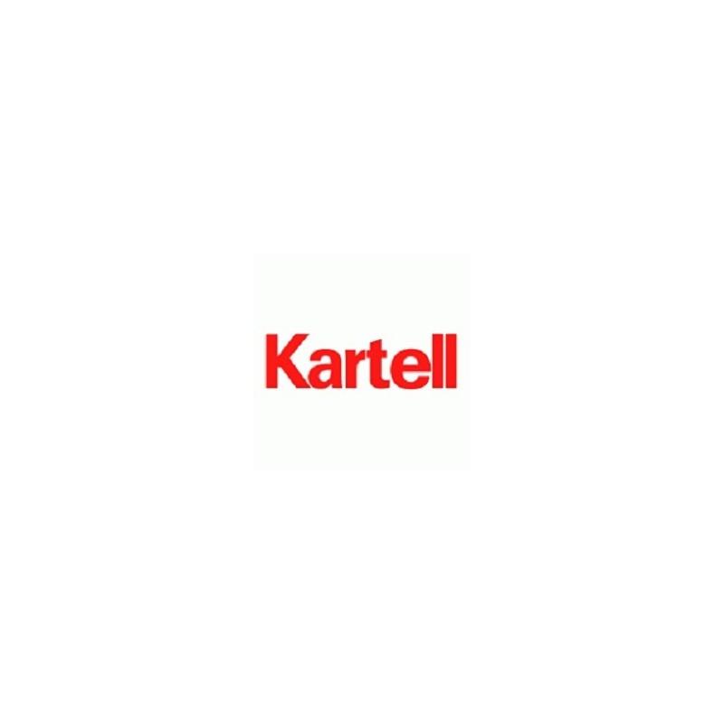 Bandeja de cartón con tapa para 2 portaobjetos