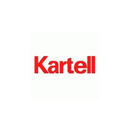 Bandeja de cartón sin tapa para 20 portaobjetos