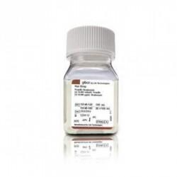 Tiras de orina Combur Test 10M frasco de 100 unds