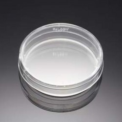 Frasco con vaporizador HDPE. 1000 ml