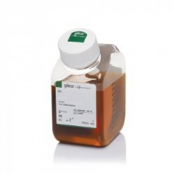 Amoníaco suero origen humano 4x2 ml