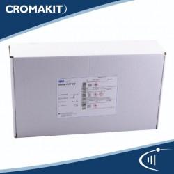 Solución decolorante electroforesis 20x de 250 ml