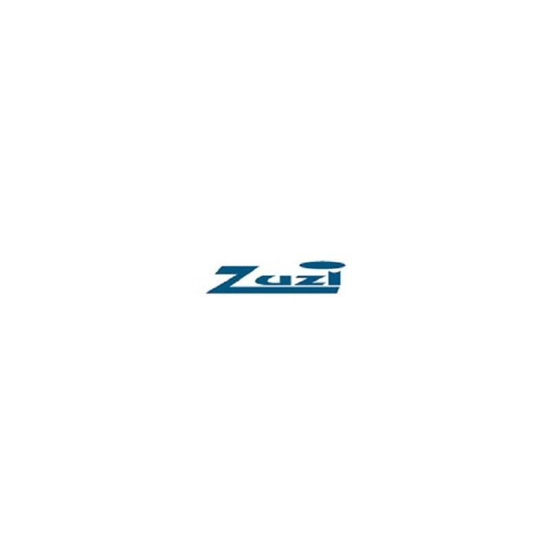 Clostridium difficile toxinas A y B 10 placas